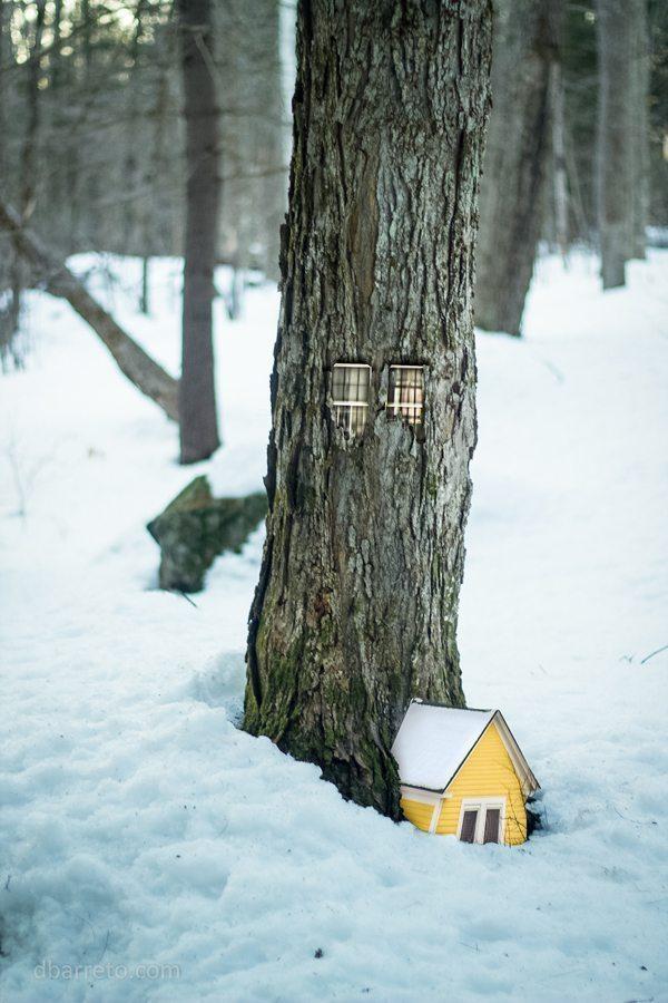 woodhouses4