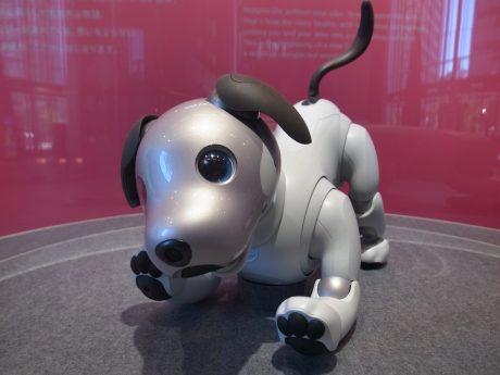 ソニー、「調理&配達・配膳ロボット開発」プロジェクトに石黒浩教授を招聘