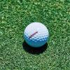 日産自動車、確実にカップインするゴルフボールを開発