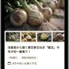 一番美味しい農水産物を産地から直送する「ukka(ウッカ)」が目指すものとは